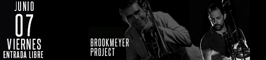 7-junio-brookmeyer project